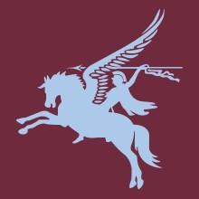 7 Parachute Regiment RHA