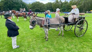 British Driving Society Annual Show – July 2021